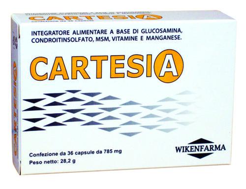 cartesia_foto_new